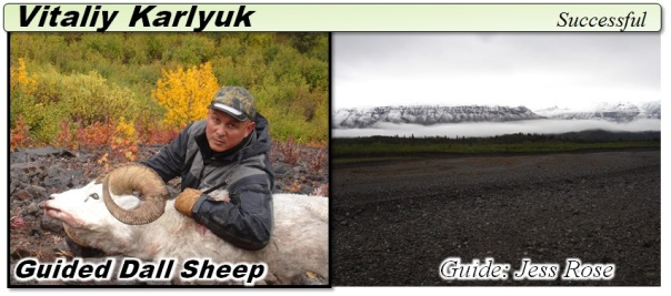 Vitaliy 2012 Sheep Icon