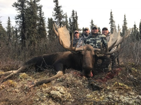 2 Moose 2 Devils Mountain Lodge 2017